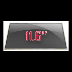 "11.6"""